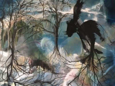 Dark Rabbit by Clea Wallis